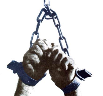 tortura G8